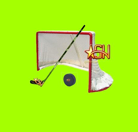**Hokejs